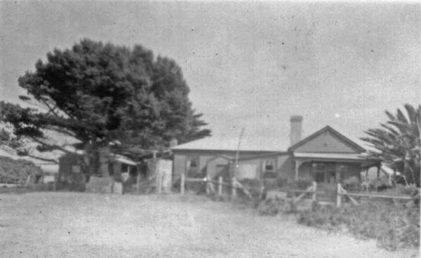 Harpsden, King Island, in 1954