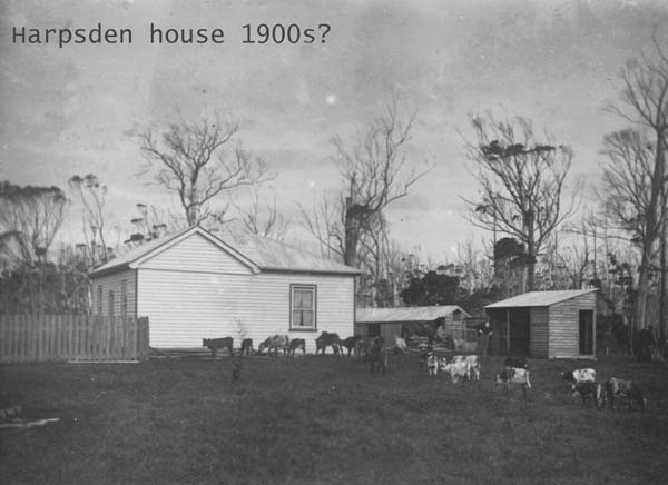 Harpsden, King Island, in 1900s